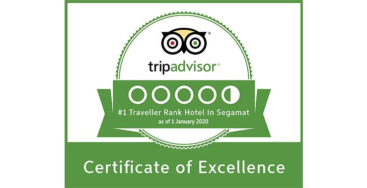 trip advisor_website